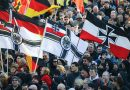The Rise of Radical Right Parties in Western Europe